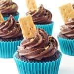 Smores Chocolate Cupcakes