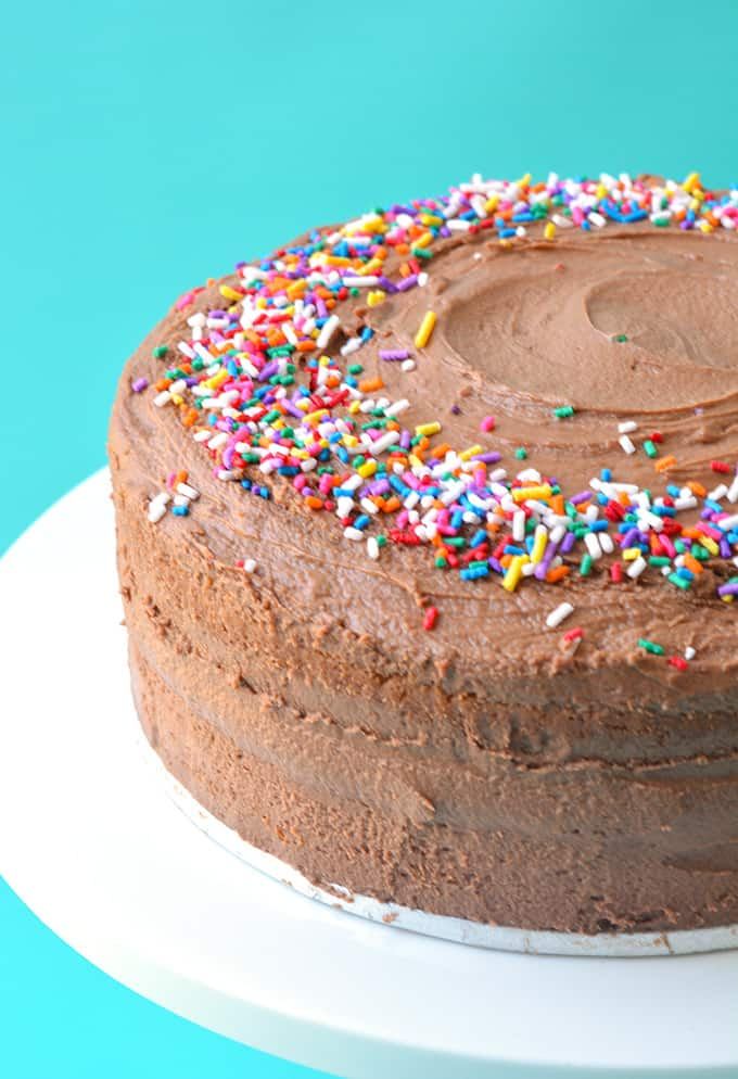 Two layer cake covered in Nutella frosting and sprinkles