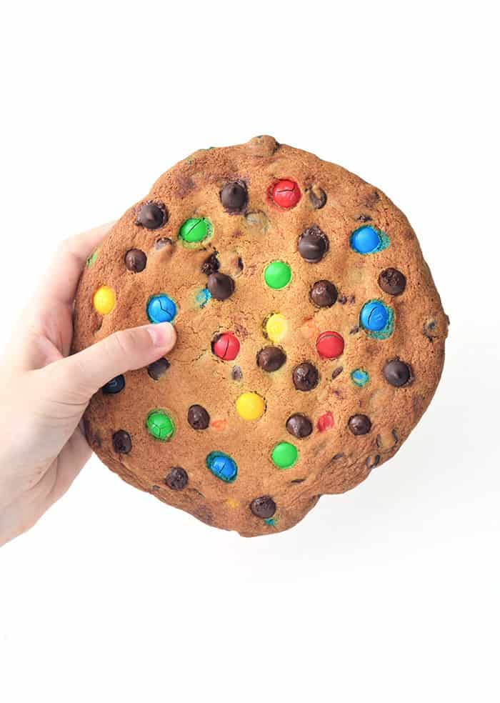 One Giant M&M Chocolate Chip Cookie