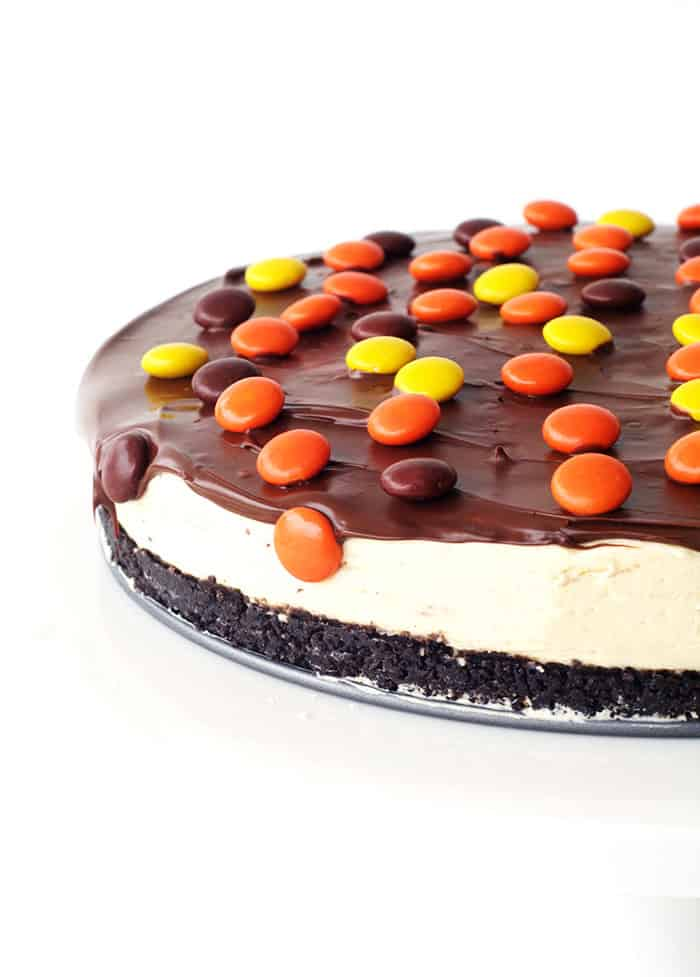 No Bake Reeses Pieces Peanut Butter Cheesecake