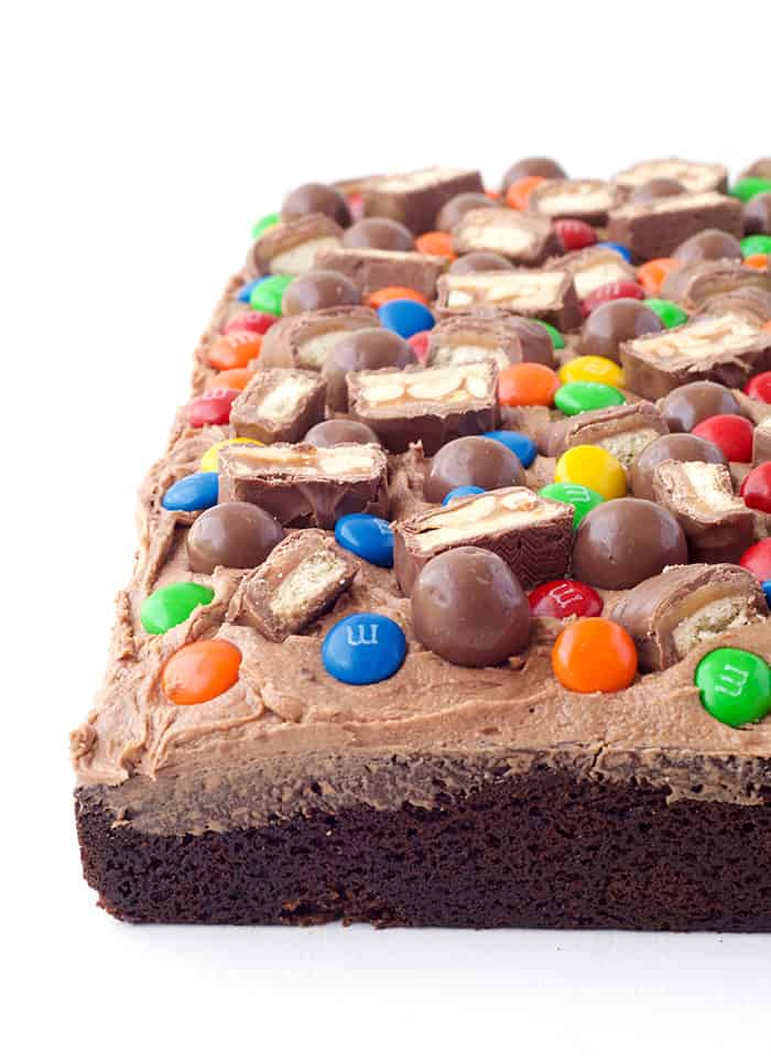 Candy Covered Chocolate Sheet Cake
