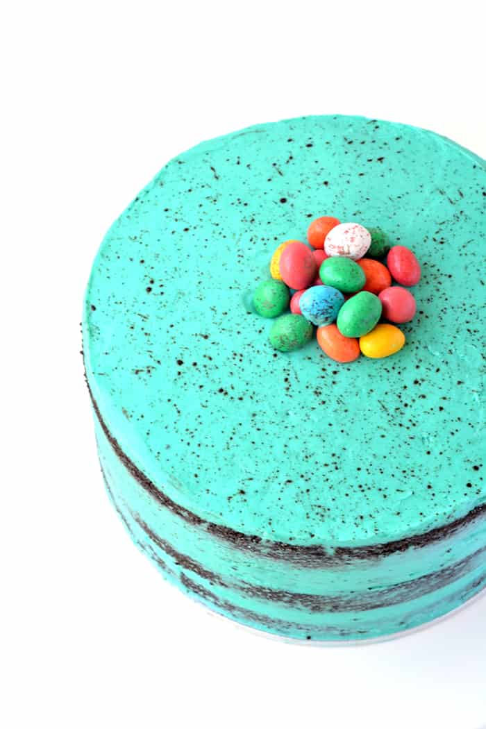 Speckled Egg Pinata Cake