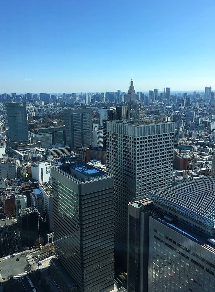 City views from Tokyo Observation Deck