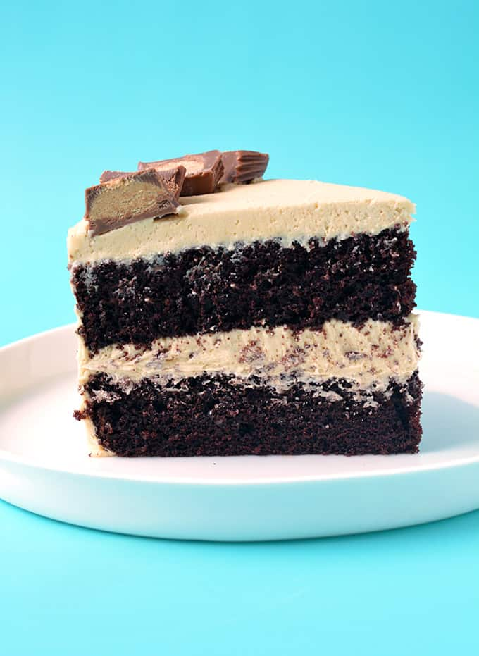 Side view of a slice of Peanut Butter Chocolate Cake