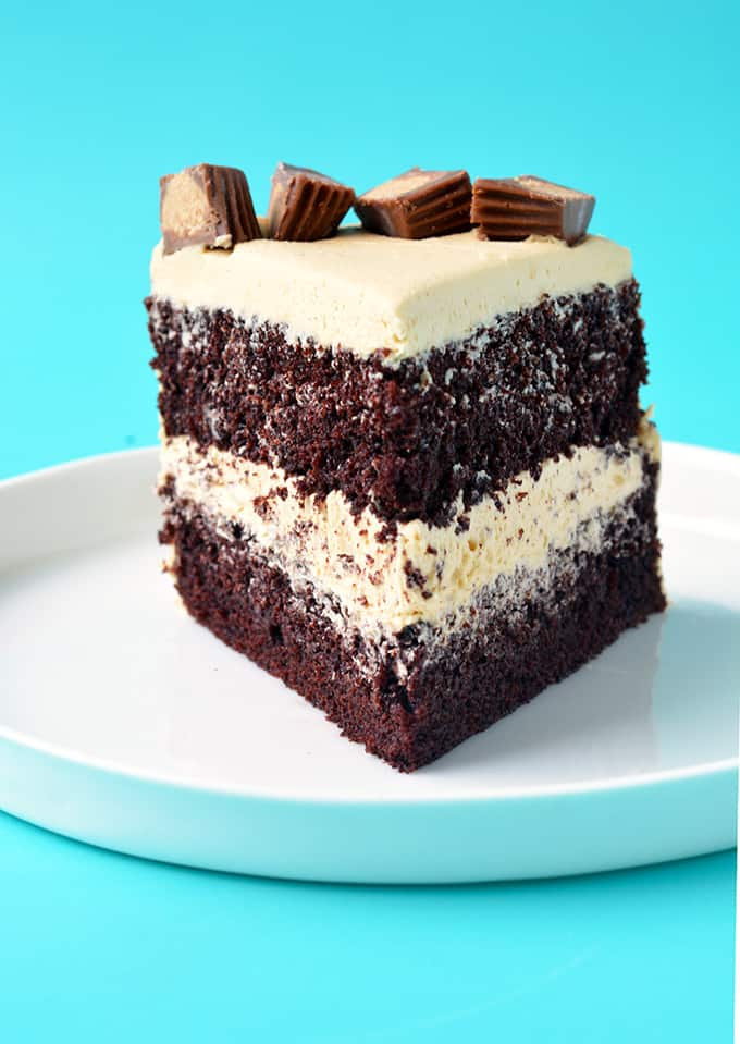 A slice of Peanut Butter Chocolate Layer Cake on a white plate