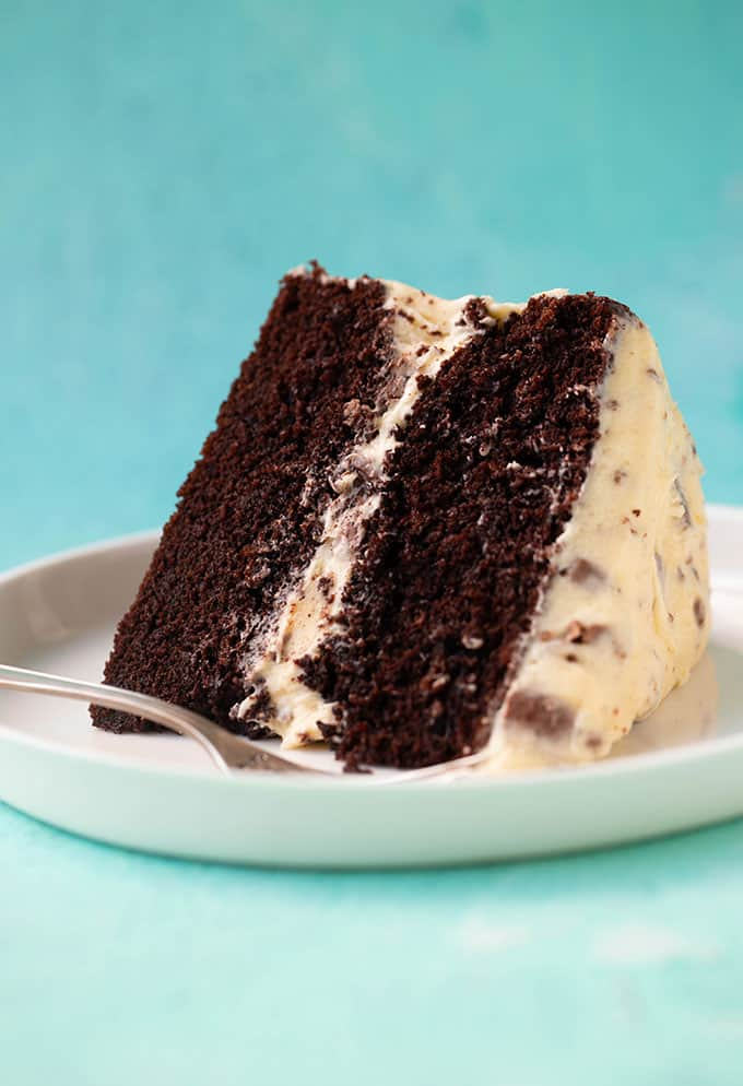 Two layer Chocolate Cake on a white plate