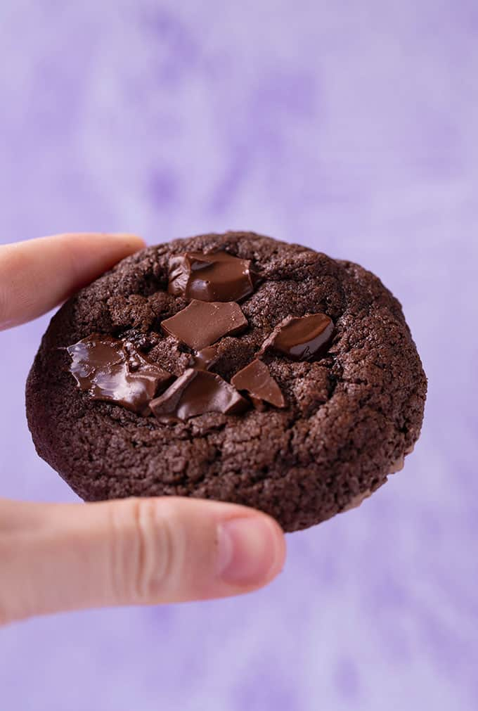 A hand holding one Chocolate Cookie