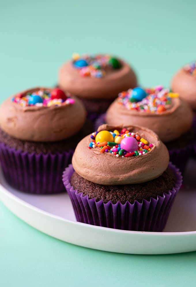 Homemade chocolate cupcakes topped with chocolate buttercream