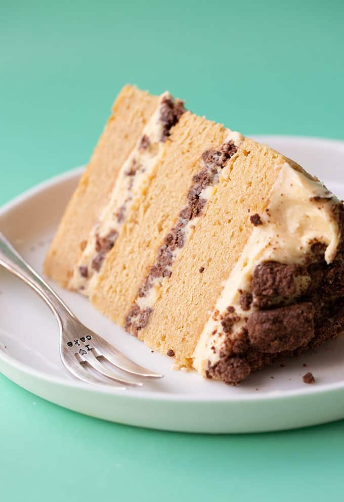 A close up of a slice of peanut butter cake