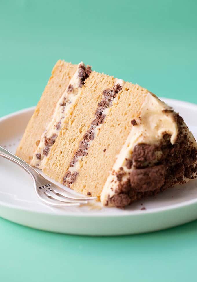 A close up of a peanut butter cake on a white plate
