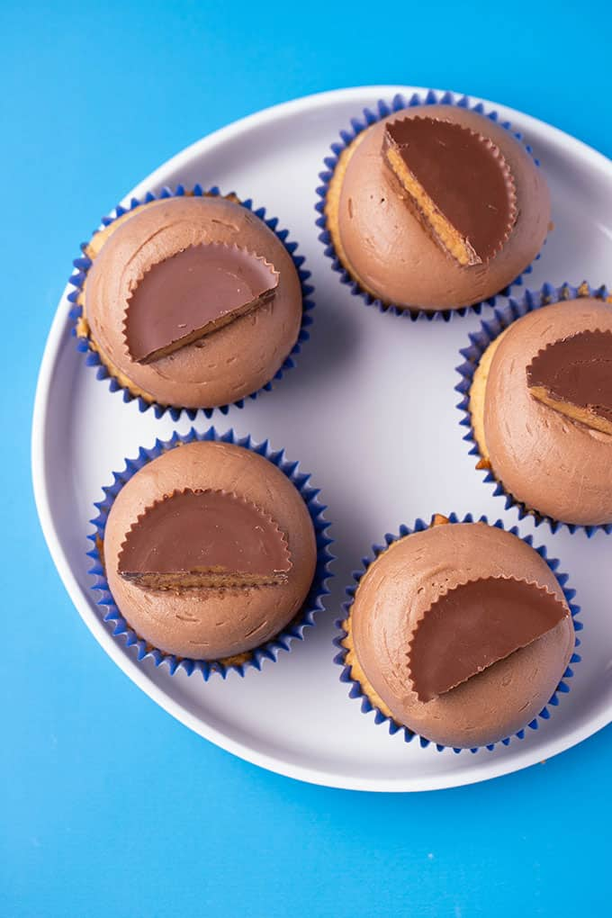 Top view of a plate of peanut butter chocolate cupcakes