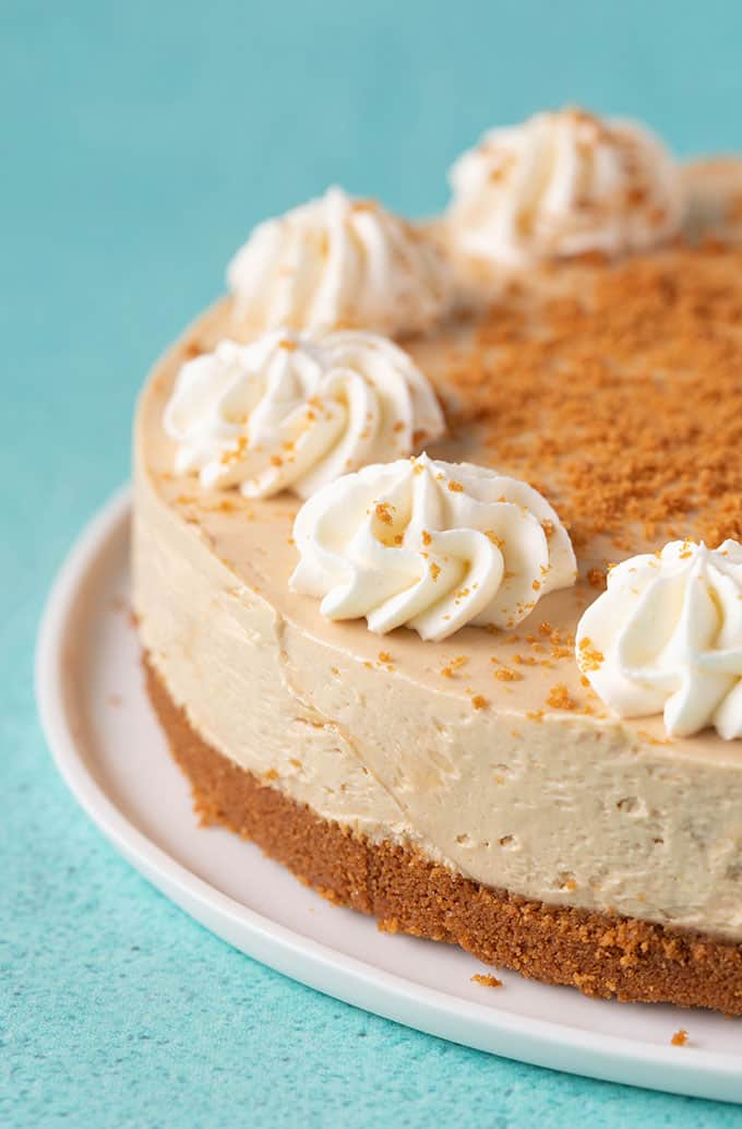 Close up of a homemade Biscoff Cheesecake on a green background