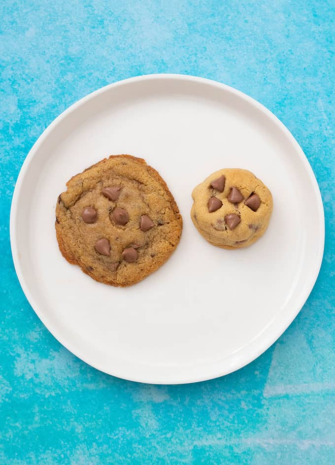 Two chocolate chip cookies sitting on a white plate