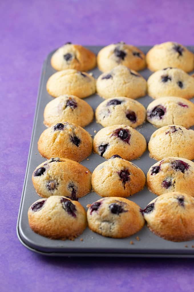A tray of mini Blueberry Muffins fresh out of the oven
