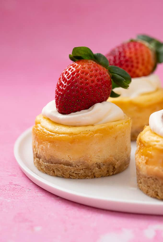 Close up of a mini Baked Cheesecake on a pink background