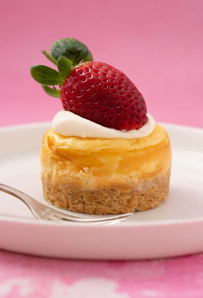 A vanilla cheesecake on a white plate with a dessert fork