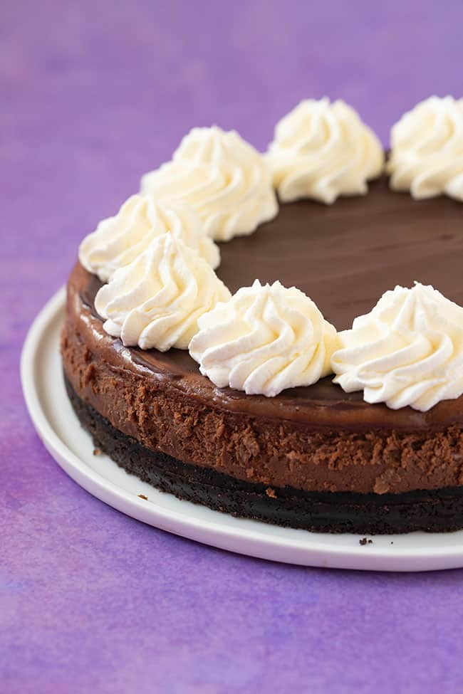 A Baked Chocolate Cheesecake topped with swirls of whipped cream