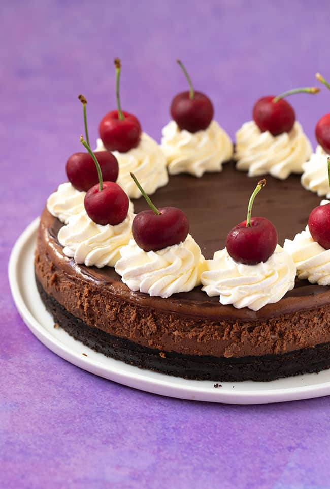 A baked chocolate cheesecake decorated with swirls of cream and cherries