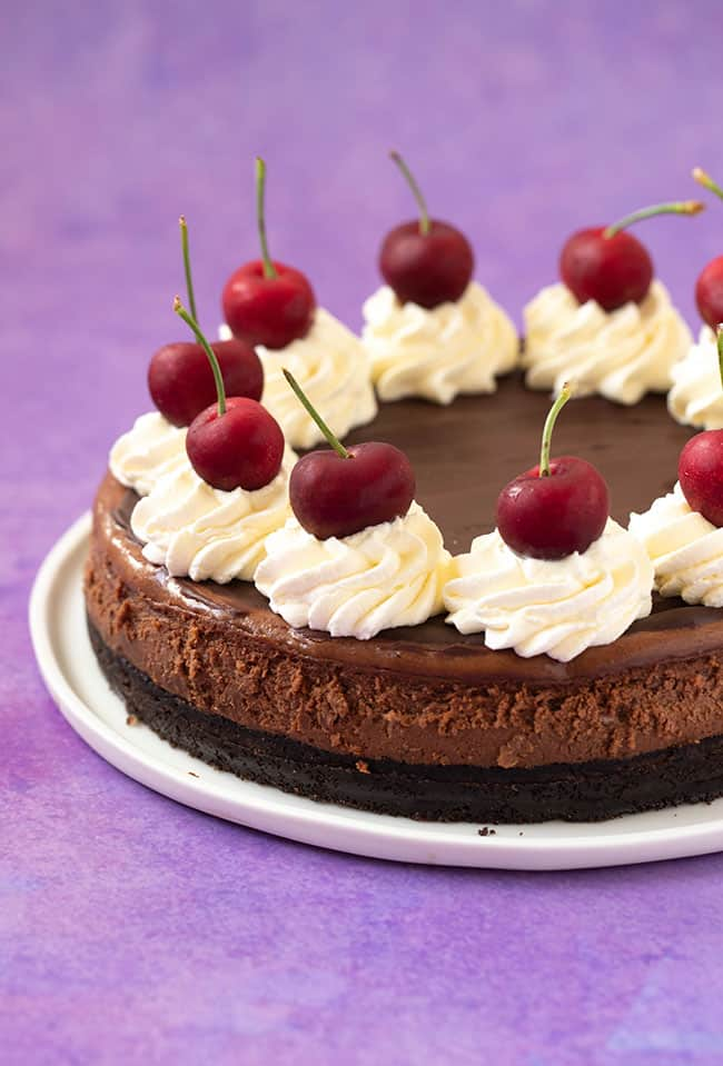 A Baked Chocolate Cheesecake topped with whipped cream and fresh cherries