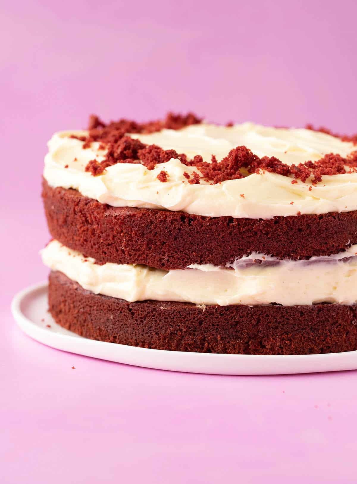 A beautiful two layer Red Velvet Cake on a white plate