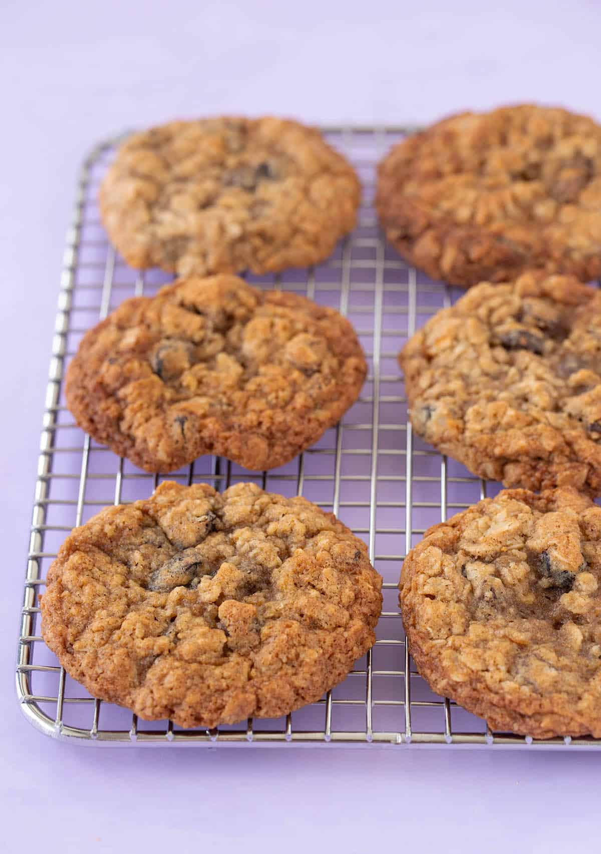 A wire cooling rack with homemade Oatmeal Raisin Cookies on it