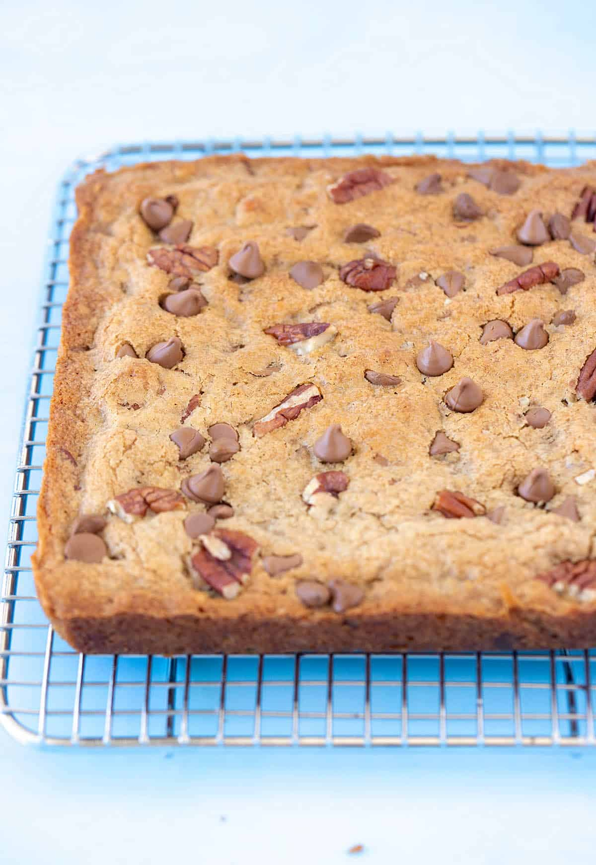 A Pecan Chocolate Chip Blondie fresh from the oven sitting on a cooling rack
