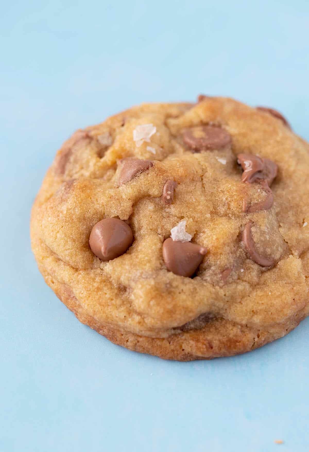 A close up of a homemade Brown Butter Chocolate Chip Cookie