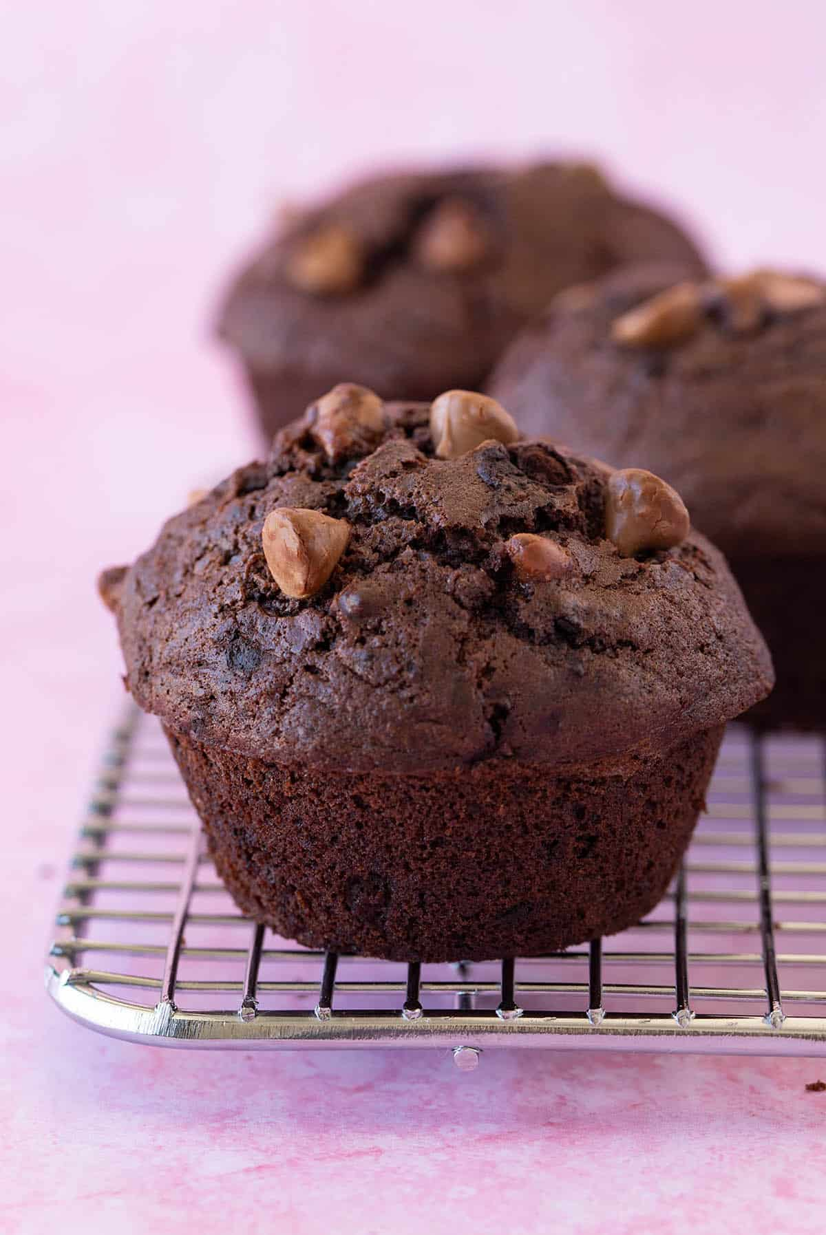 Close up of a homemade big chocolate muffin