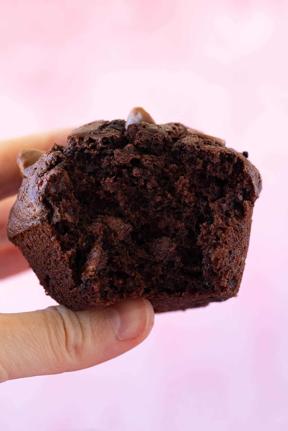A hand holding a big chocolate muffin with a bite taken out of it