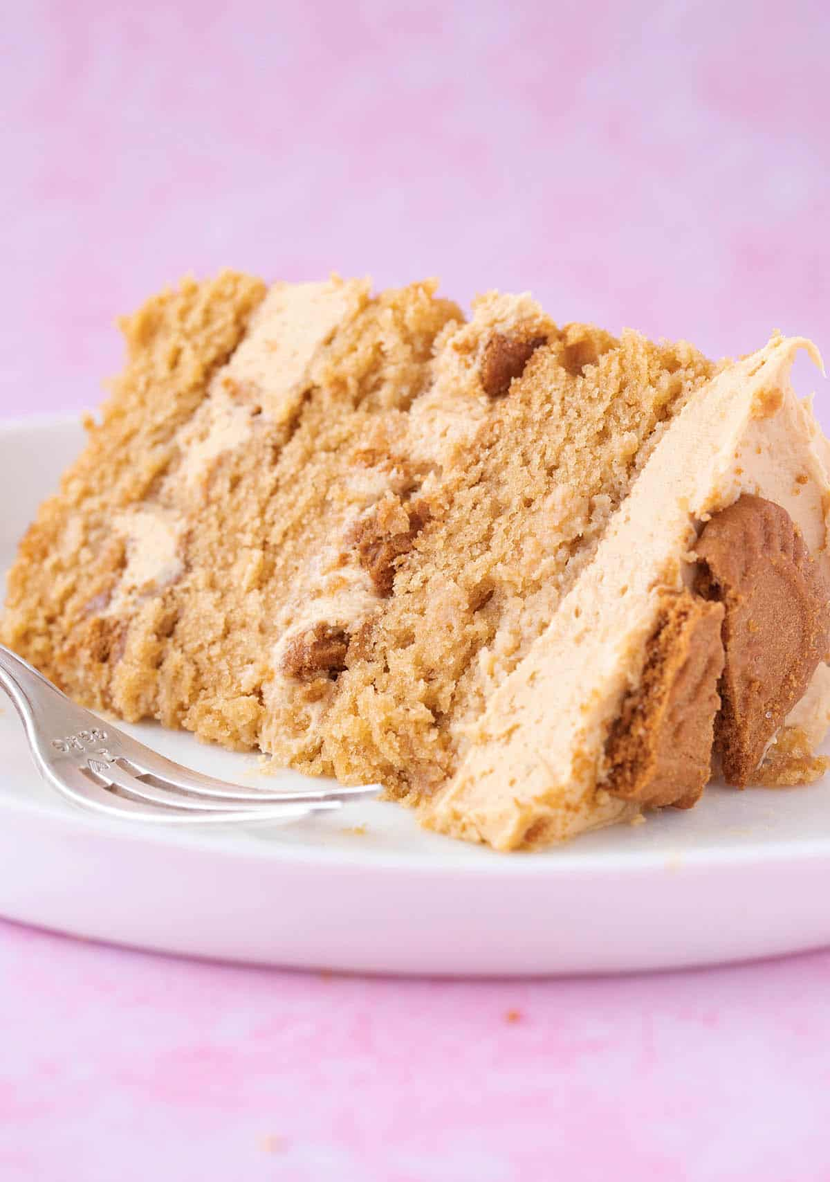 A slice of homemade Biscoff Cake on a pink background.